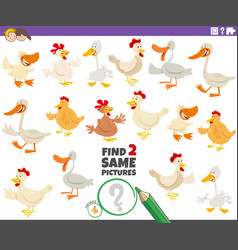Find two same farm birds educational game vector