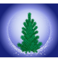 hristmas tree vector image