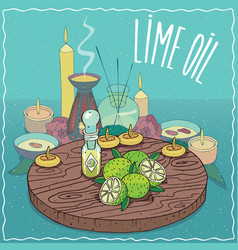 lime oil used for aromatherapy vector image