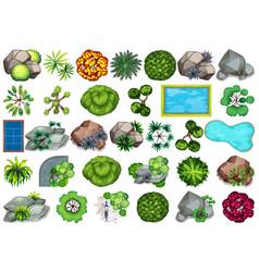 set plant for decoration vector image