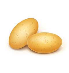 Two potatoes useful vector