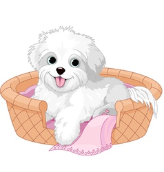 White fluffy dog vector
