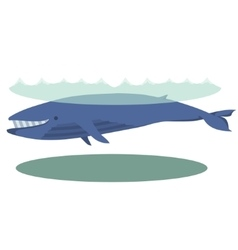 a cartoon blue whale with big vector image