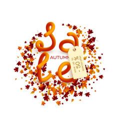 autumn sale poster design vector image