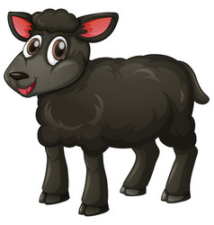 Black lamb on white background vector