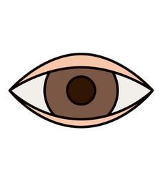 color sketch silhouette eye symbol browser vector image
