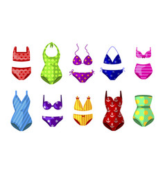 colorful female beachwear swimwear lingerie vector image