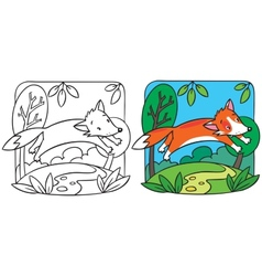 Little red fox coloring book vector
