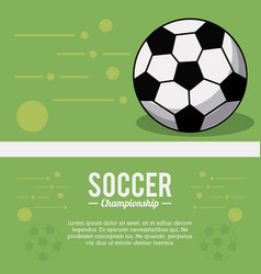 soccer sport ball championship image vector image