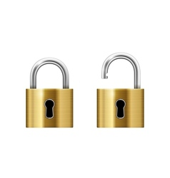 Padlock with Keyhole vector image vector image