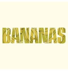 Bananas sign vector image