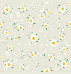 seamless daisy floral pattern beautiful daisy flo vector image