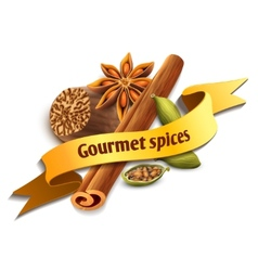 Spice ribbon badge vector image