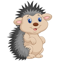 Cartoon cute hedgehog vector
