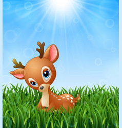 Cute baby deer cartoon in the grass on a backgroun vector