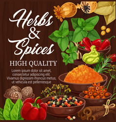 Herbs spices food condiments on wood background vector