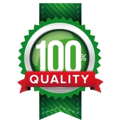 Hundred percent quality green ribbon vector image
