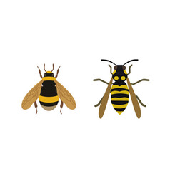 insect icon flat isolated nature flying honey bee vector image