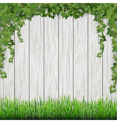 Ivy and grass on wood vector