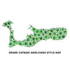 Marijuana composition grand cayman island vector
