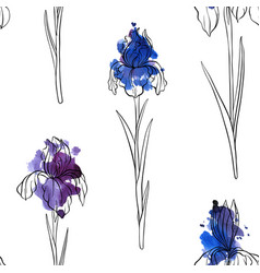 seamless pattern with flowers iris vector image