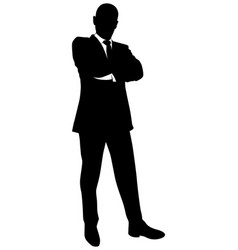 silhouette of a business man in a suit standing vector image