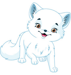 arctic fox vector image