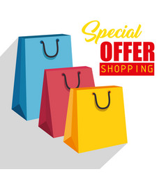 Colorful shopping design vector