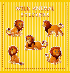 cute cartoon lion on stickers vector image