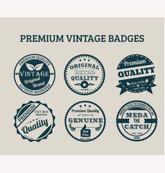 premium vintage badges vector image