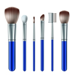 Set of makeup brushes vector image