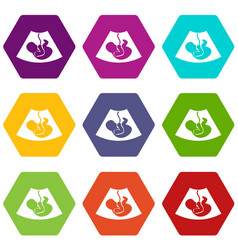 Ultrasound fetus icon set color hexahedron vector