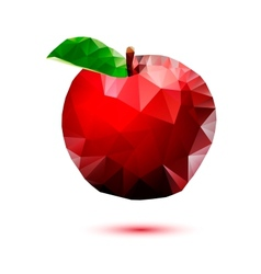 Apple abstract isolated on a white backgrounds vector image