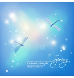 Spring abstract blue background with dragonflies vector image vector image