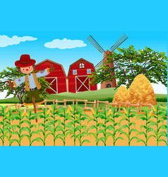 Farm scene with crops and scarecrow vector