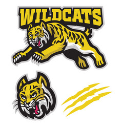 Jumping wildcats mascot in sport mascot style vector