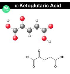 Ketoglutaric acid molecule vector image