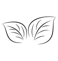 leaves sketch 0611 vector image vector image