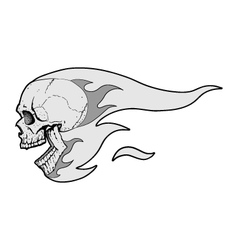 Skull with Flames Fliying vector image