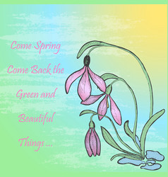 Spring theme card with snowdrop vector