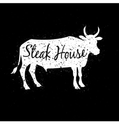 Grunge scratched white cow silhouette with text vector image