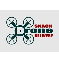 Drone quadrocopter icon Drone snack delivery text vector image vector image