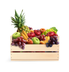 Fruits in box realistic composition vector