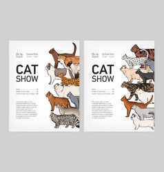 Set of trendy flyer or poster templates for cat vector