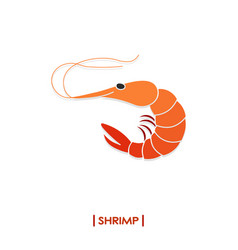 Shrimp icon isolated on white background vector