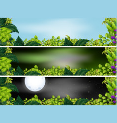 three garden scenes at different times of day vector image
