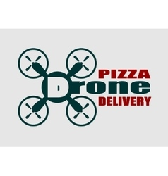 Drone quadrocopter icon Drone pizza delivery text vector image vector image
