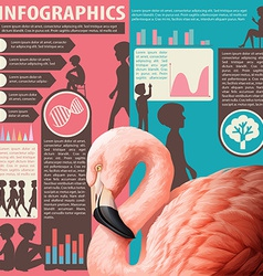 A chart showing humans and animals vector image