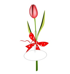 A Fresh Red Tulip with Red Ribbon vector image
