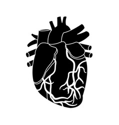 Heart beat pulse for medical rhythm cardiac vector